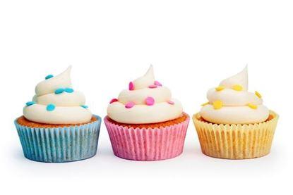 Baker's Dozen Jumbo Cupcakes